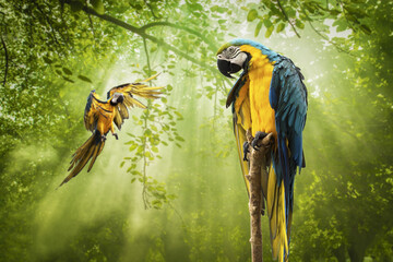 Blue Gold Macaw Parrot standing on Branch