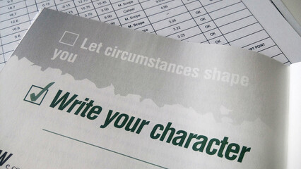 Write your character