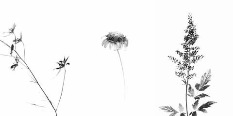Trittico fiorito