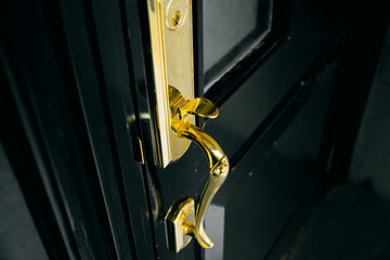 luxury door golden handle shiny with black wood door.