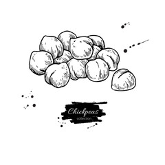 Chickpeas hand drawn vector illustration. Isolated Vegetable engraved style object.