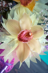 One Orchid closeup of a bouquet of three orchids beautifully decorated on wooden background concept birthday flowers