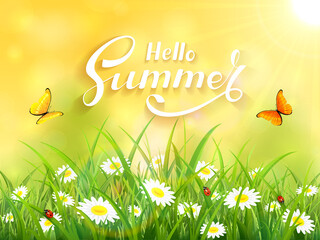 Lettering Hello Summer on yellow nature background