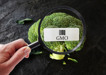 GMO food label