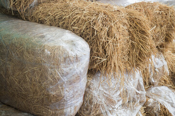 Stacked Blocks Of Bales Hay