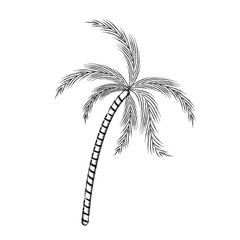blurred thick silhouette of palm tree vector illustration