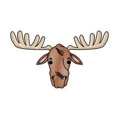 moose antler animal natural wildlife image vector illustration