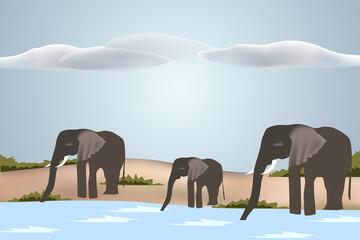 Drinking herd of Elephants - Vector