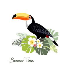 Toucan, vector illustration