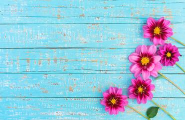 Rosa Sommer Blumen Dekoration auf Holz Hintergrund Türkis mit Textfreiraum