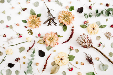 Dried flowers texture pattern: beige peony, protea, eucalyptus branches, roses on white background. Flat lay, top view. Floral background
