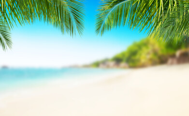 Tropical beach with sand, summer holiday background.