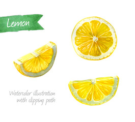 Lemon slices isolated watercolor illustration
