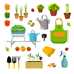 Vector set of objects related to gardening. Seedlings and plants in pots, in special  crates, vegetables, seeds and garden tools