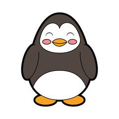cute color penguin cartoon vector graphic design
