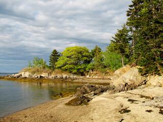 Pretty Rocky Shore on an Island in Coastal Maine