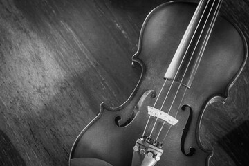 Closeup Violin on wood background, Black and white