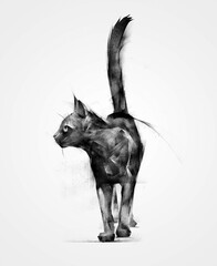 drawn isolated animal black cat