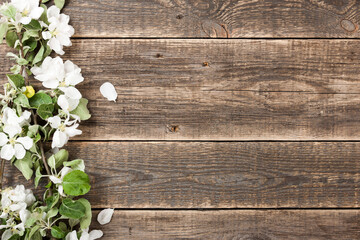 Spring blossom on wood
