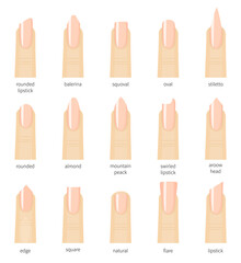 Different fashion nail shapes. Set kinds of nails. Salon nails type trends.