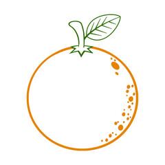 Orange Fruit With Green Leaf Cartoon Lines Drawing. Illustration Isolated On White Background