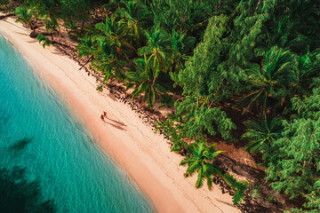 Aerial view of tropical beach, Dominican Republic