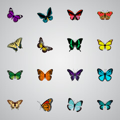 Realistic Checkerspot, Pipevine, Polyommatus Icarus And Other Vector Elements. Set Of Butterfly Realistic Symbols Also Includes American, Malachite, Beauty Objects.
