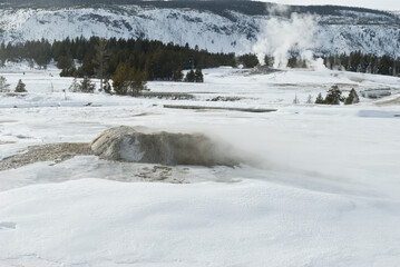 Geyser, Winter, Upper Geyser Basin, Yellowstone NP