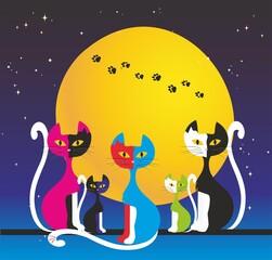 Pięć  kolorowych kotów
