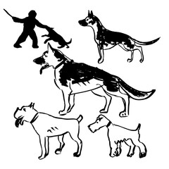 Hand Drawn Vector Dogs Set, Police dogs.