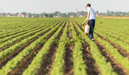 Young farmer spraying soybean plantation with pesticide