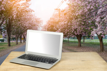 laptop on wood table with nature background