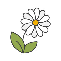 Camomile color icon