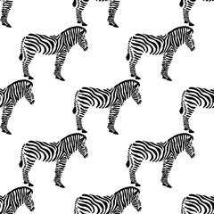 Seamless background with zebras.