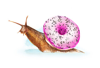 Water color snail with a donut shell