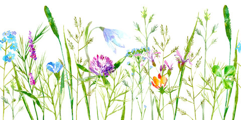 Floral seamless border of a wild flowers and herbs on a white background.Buttercup, clover,bluebell,vetch,timothy grass,lobelia,spike. Watercolor hand drawn illustration.