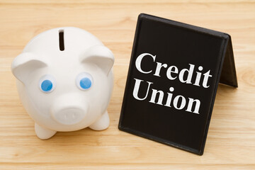 Banking using a credit union