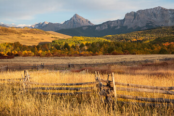 Colorado Autumn Scenery