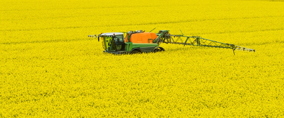 Tractor spraying rape field