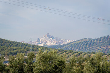 Andalusian landscape with olive trees in Spain on a day in spring