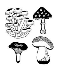 Set of doodle mushrooms.