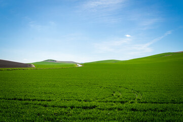 Andalusian landscape with green hills and fields in Spain on a day in spring