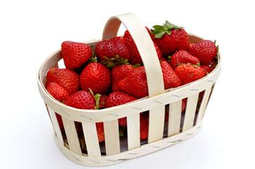 Rangement des fraises 240_F_157588659_4jEVl9N5SwjxE367OwlM4jkpqK9kAjj5