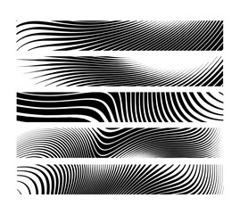 Set of abstract creative Zebra horizontal banner background.