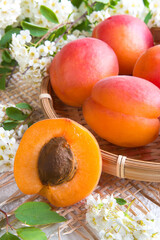 Ripe juicy apricots and a dolly apricot with a stone on a light background and flowers breakfast concept