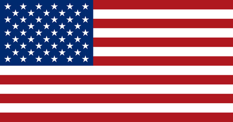 American flag, flat layout, vector illustration