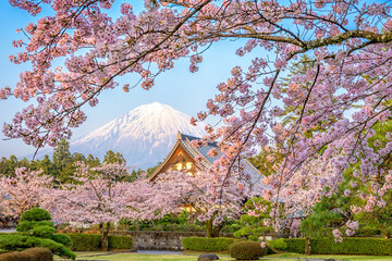 Mt. Fuji, Japan in Spring from Shizuoka Prefecture.