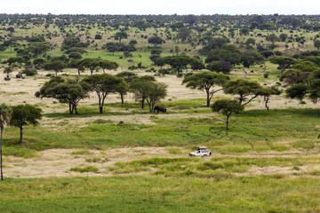On Safari Serengeti national Park. African Landscape Tanzania Africa