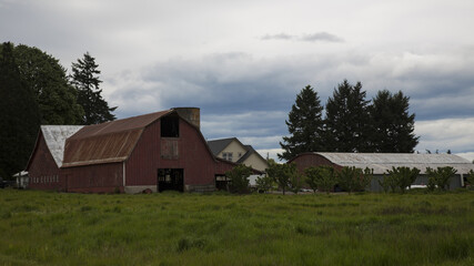 Old Rustic and Weathered Red Wooden Barn in the Country, Green Field, Trees in Background, Vivid Blue Sky with White Clouds, Daytime, Oregon - Use with Text Copy Space Overlay