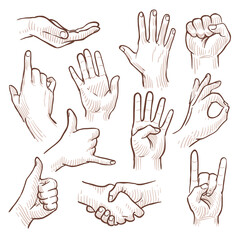 Line drawing doodle hands showing common signs vector collection